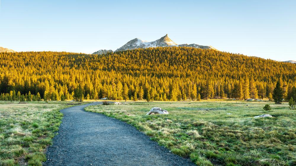 Cathedral Peak at Tuolumne Meadows