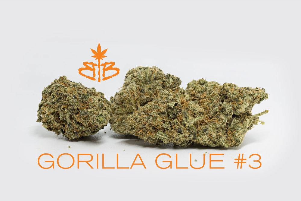 Gorilla-Glue-#3--Stack.jpg