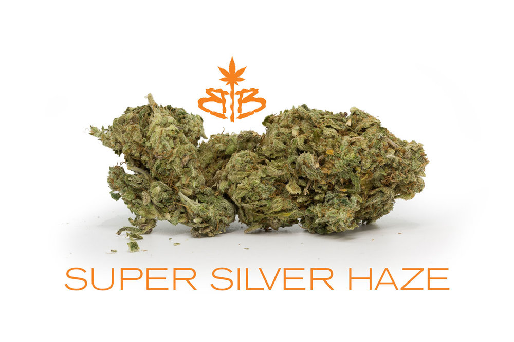 Super-Silver-Haze-BB.jpg