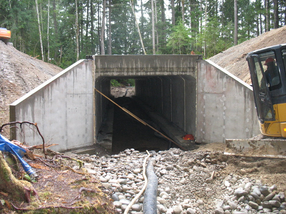 Stavis Creek Fish Passage Culvert Replacement Culvert (1).JPG