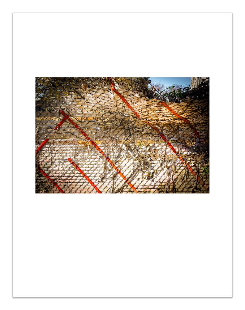 Fibonacci_Edit_12.jpg