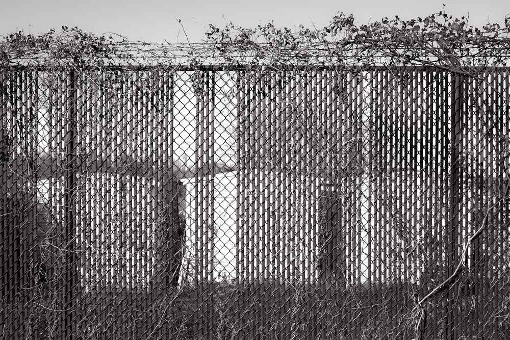 fence_gath.JPG