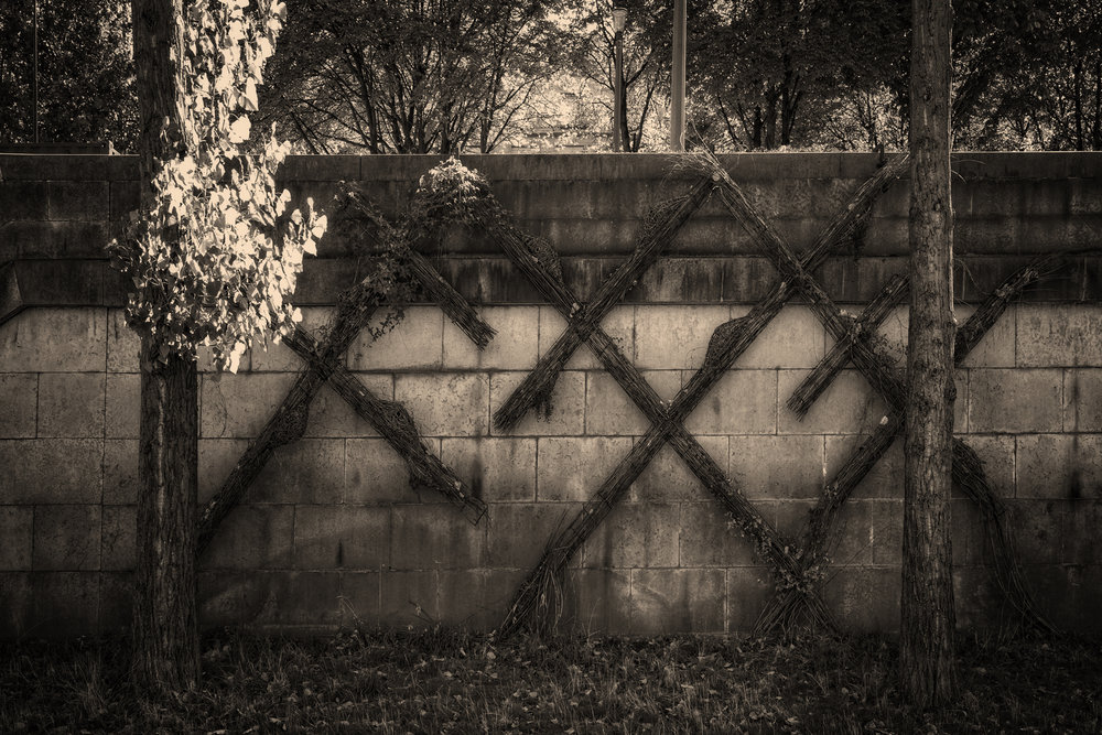 crossed_espalier_paris_gs_on1e.JPG