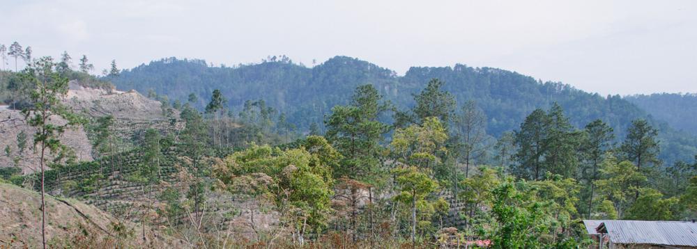 Serve Hope Landscape of Honduras and hills.png
