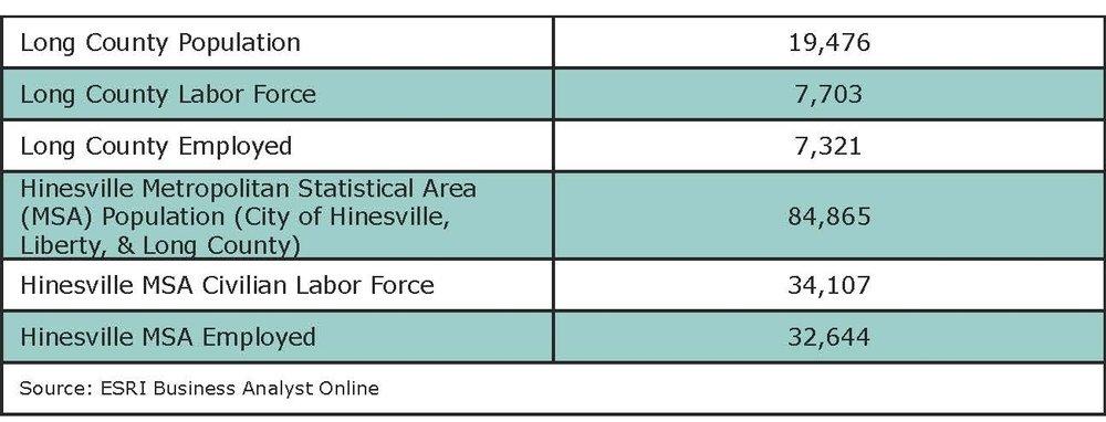 Long County_Housing Data_2018_Page_3.jpg