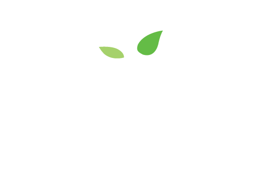 Sprout Tours, LLC