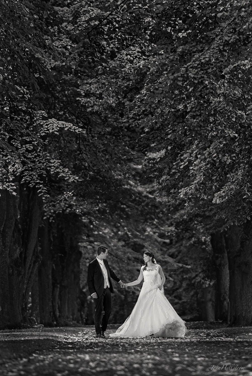 Den gnistrande gamla skogen omsluter Andreas och Jenny - prisvinnande bild i Svenska Mästerskapen (SM), London och Las Vegas.