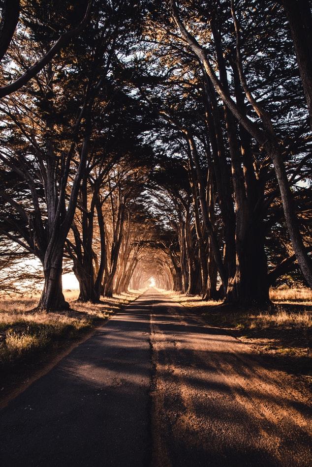 A Rest Stop - Daily Devotionals