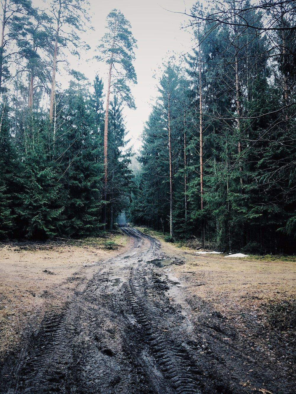 Droga z domu nad jezioro.