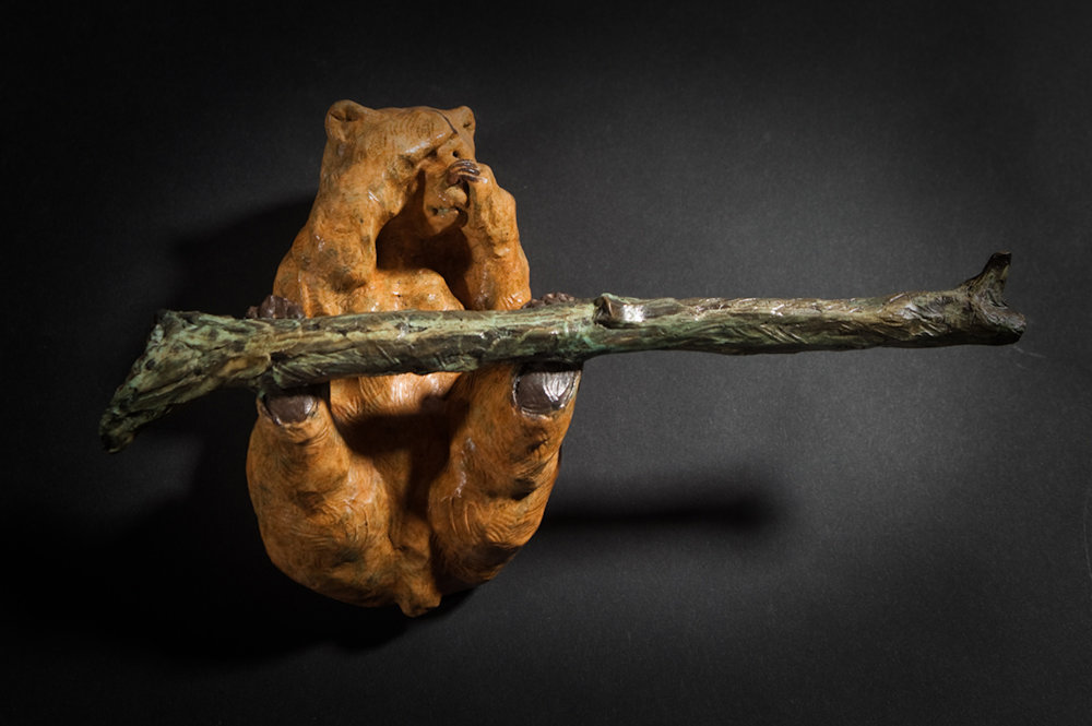 "Embearassed (Toilet Paper) Holder | 6.5"" x 11"" x 3.5"" 
