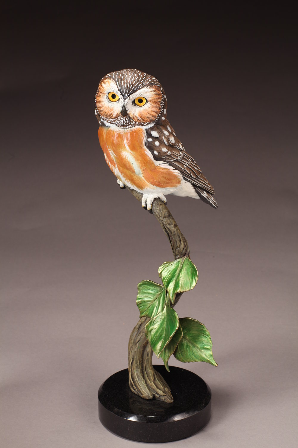 """Saw-whet Owl 