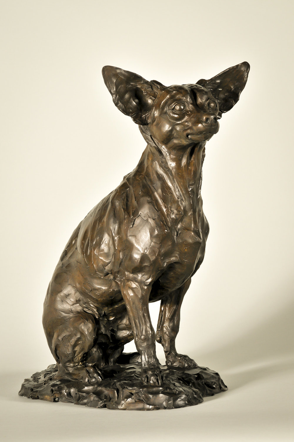 "Little Big Man |  16"" x 10"" x 12.5"" 