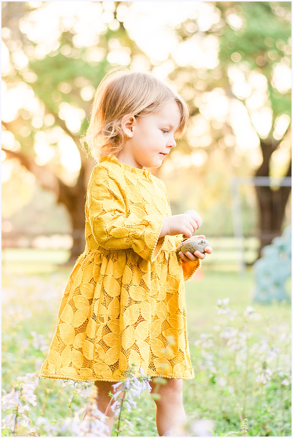 Golden Hour Child Session on Farm in Anthony Florida