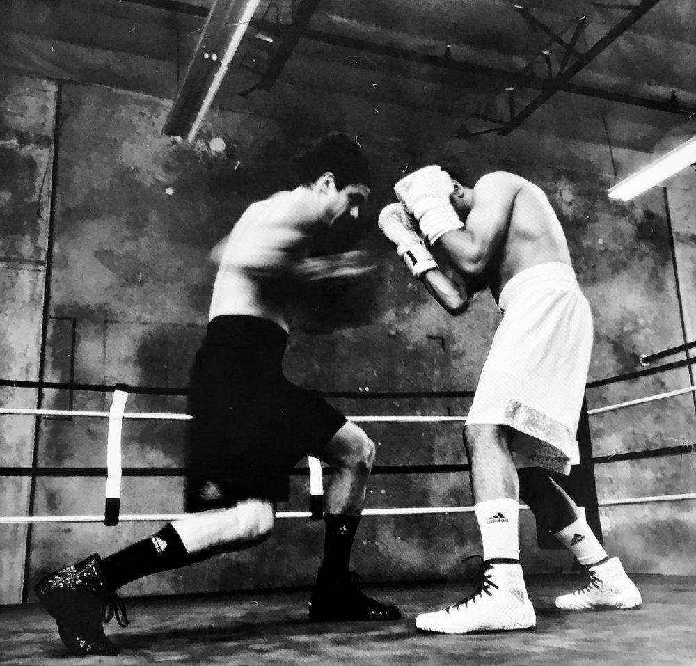 Adidas Boxing 5.jpg