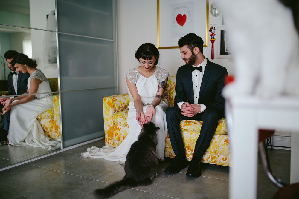 bride_and_groom_cats_in_home_session_wedding_fort_lauderdale_photographer_steph_lynn_photo-11.jpg