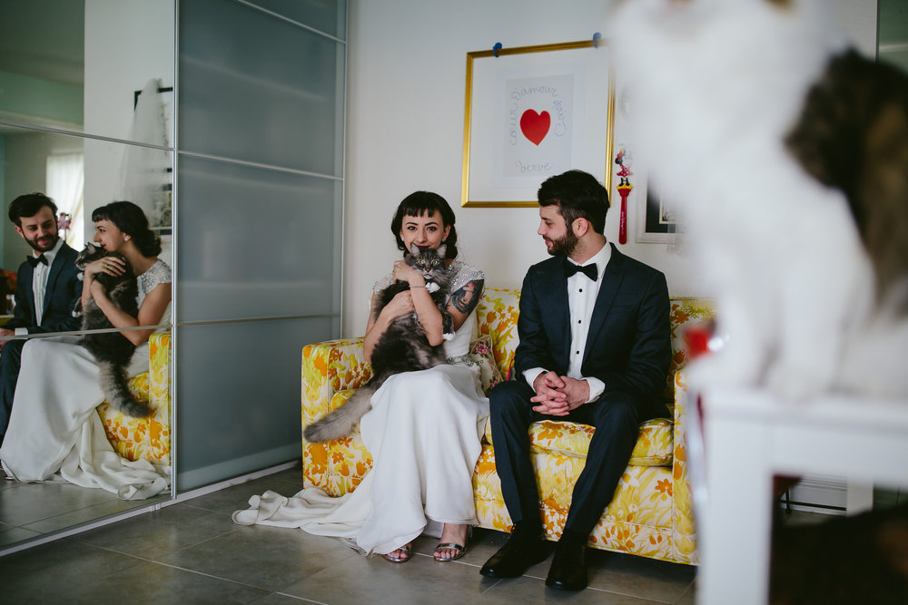 bride_and_groom_cats_in_home_session_wedding_fort_lauderdale_photographer_steph_lynn_photo-14.jpg