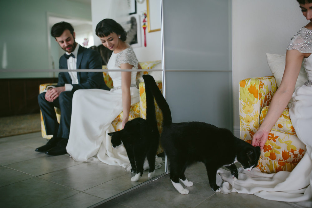 bride_and_groom_cats_in_home_session_wedding_fort_lauderdale_photographer_steph_lynn_photo-23.jpg