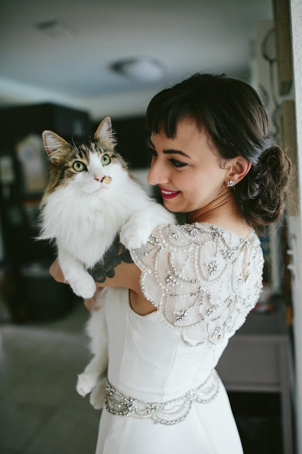 bride_and_groom_cats_in_home_session_wedding_fort_lauderdale_photographer_steph_lynn_photo-78.jpg