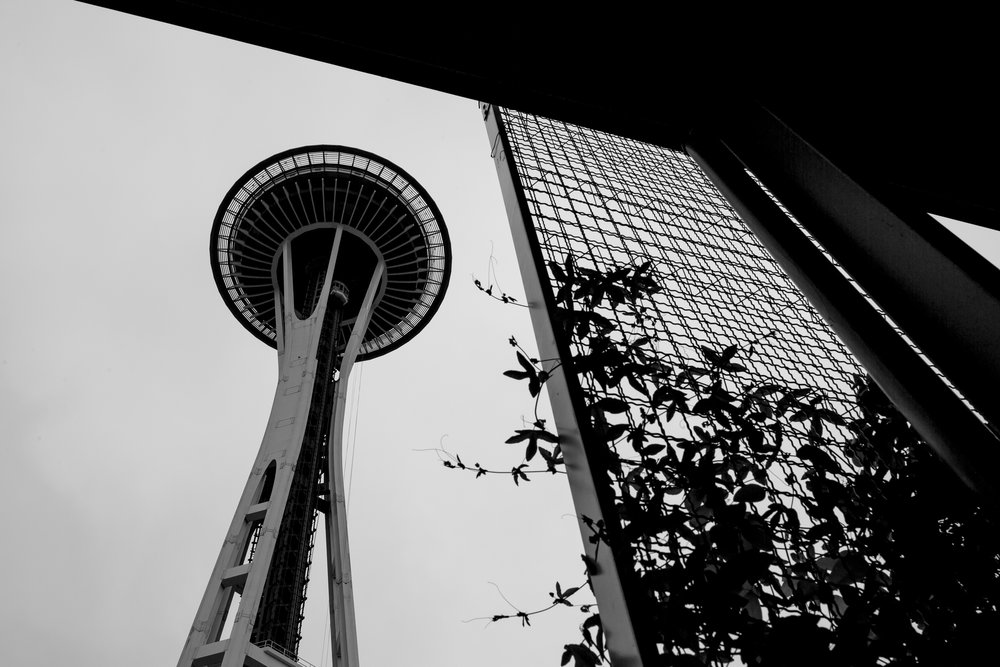 seattle-day-one-39.jpg