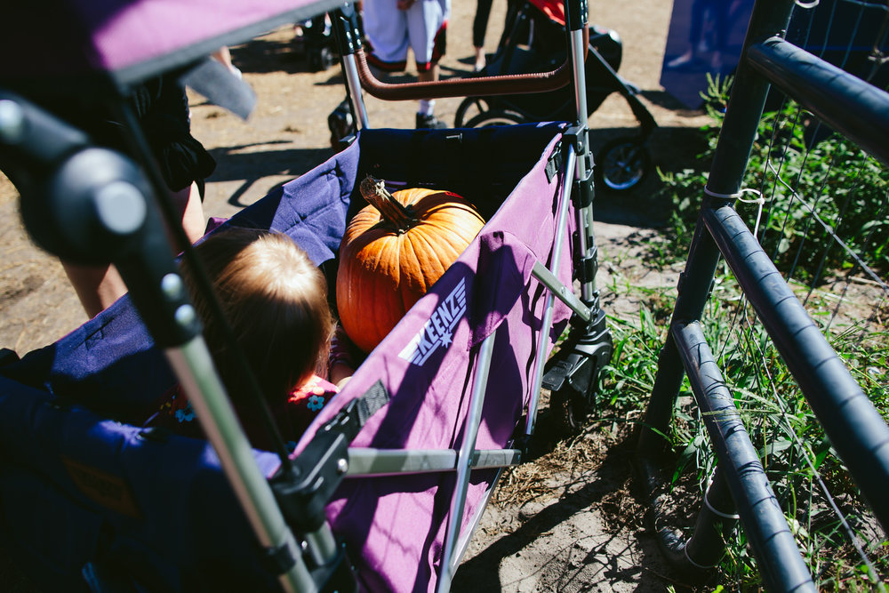 family_documentary_photography_tiny_house_photo_bedners_farmers_market_florida-66.jpg