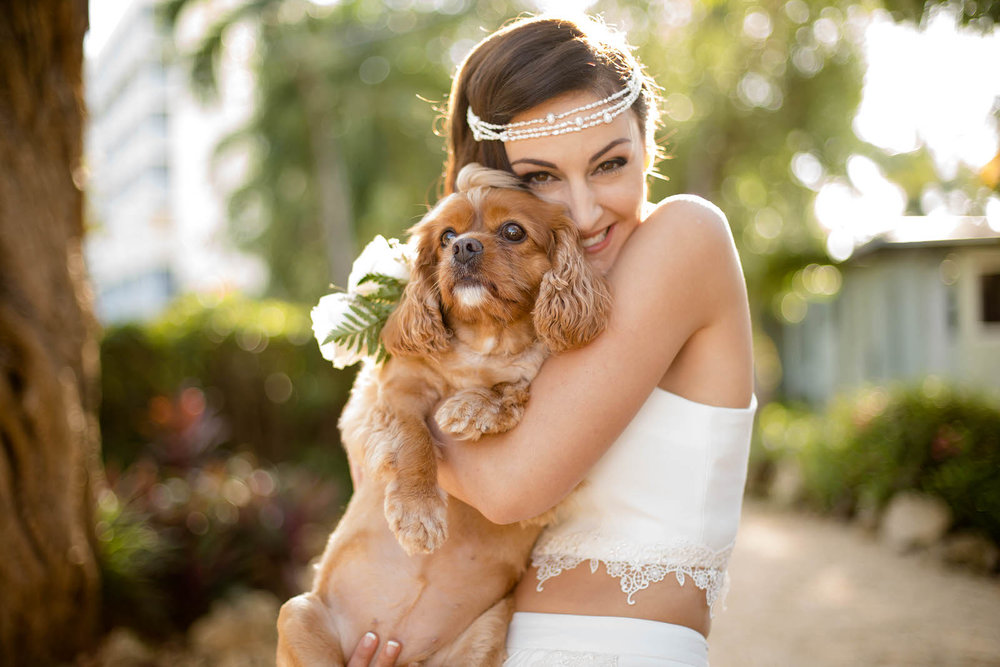 bride_and_puppy_dogs_at_weddings_tiny_house_photo.jpg
