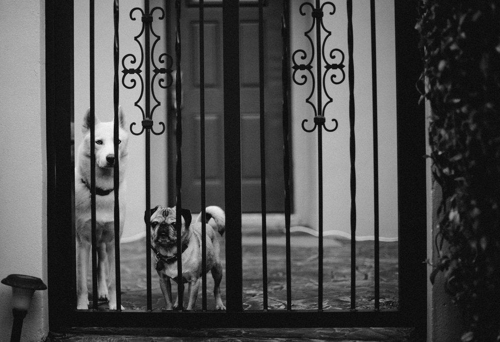 miyagi_and_dany_waiting.jpg