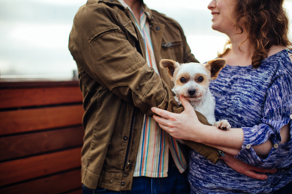 happy_engaged_couple_with_puppy_bay_area_wedding_photographer.jpg
