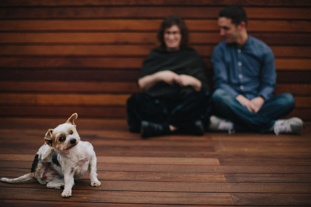lifestyle_engagement_portraits_at_home_with_pets_dog_bailey_couple.jpg