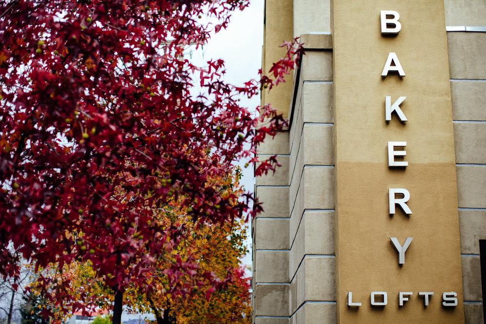 winter_bakery_lofts_fall_leaves_emeryville_bay_area_california