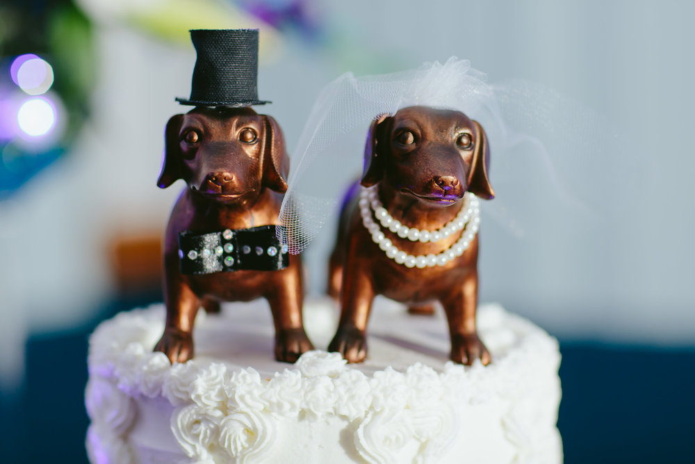 This bride purchased the puppies at Hobby Lobby and dressed them up in wedding attire. DIY cake topper FTW!