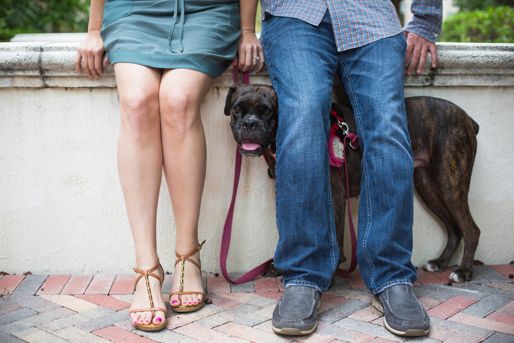 couple's legs with their fur baby puppy