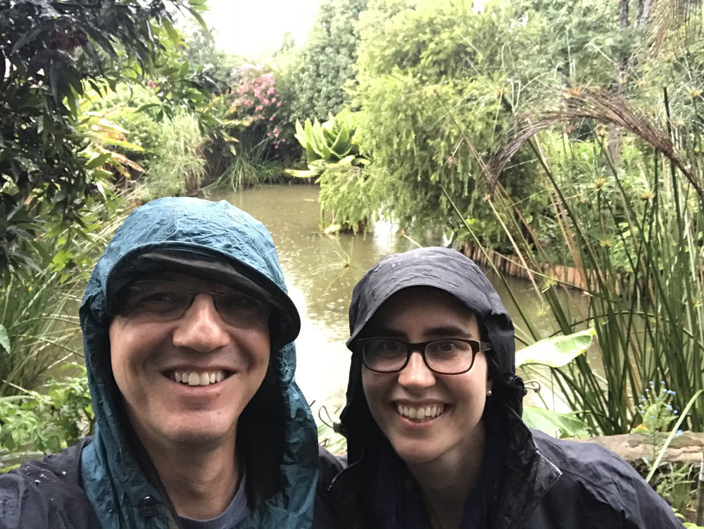 a rainy rainforest hike