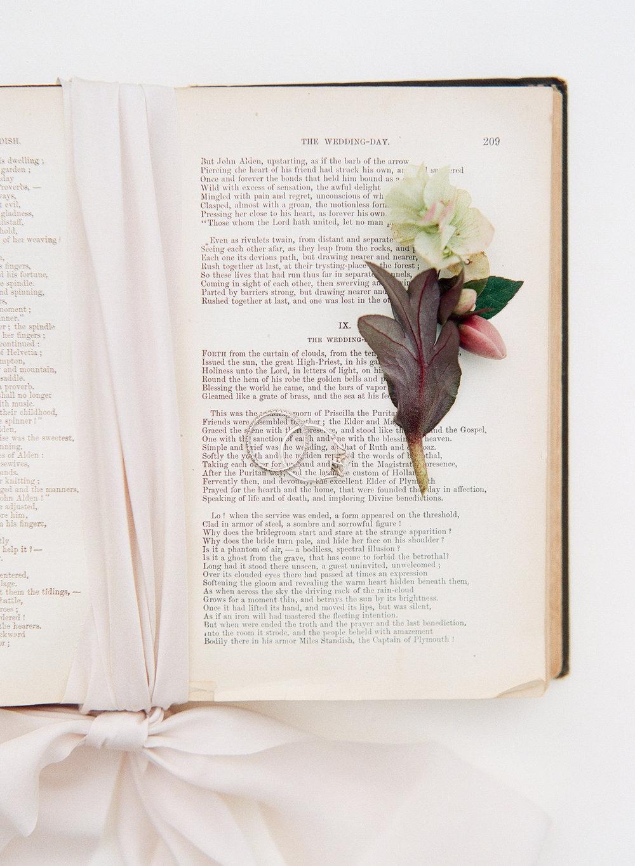 Magnolia-Rouge-Swan-Lance-48.jpg