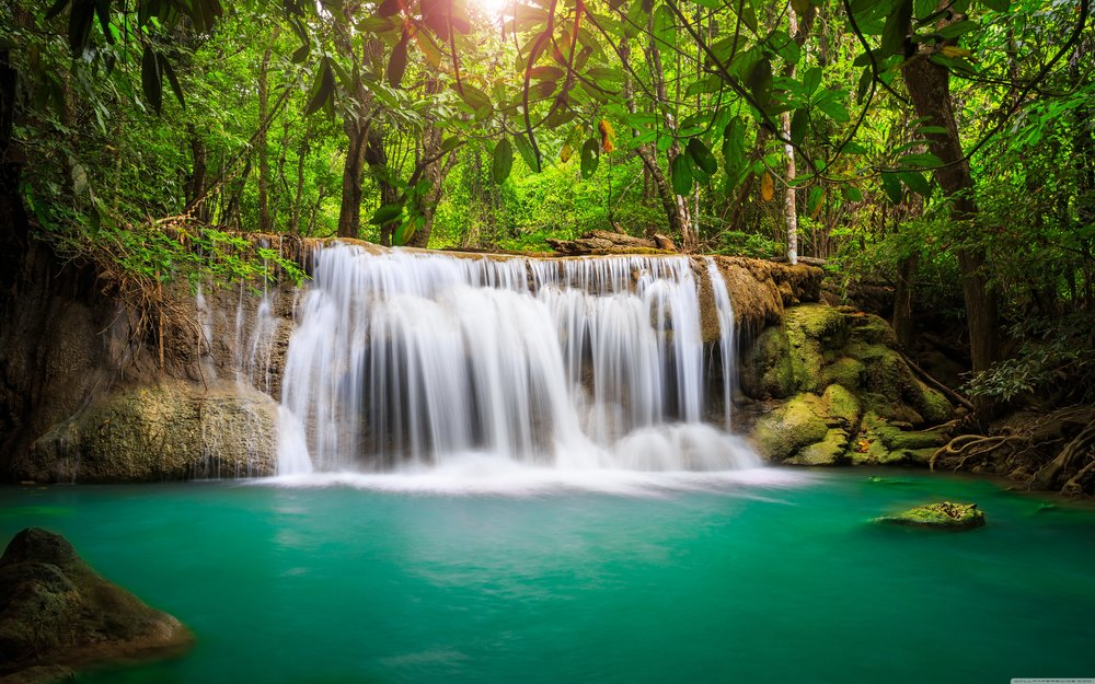 rainforest_waterfall-wallpaper-5120x3200.jpg