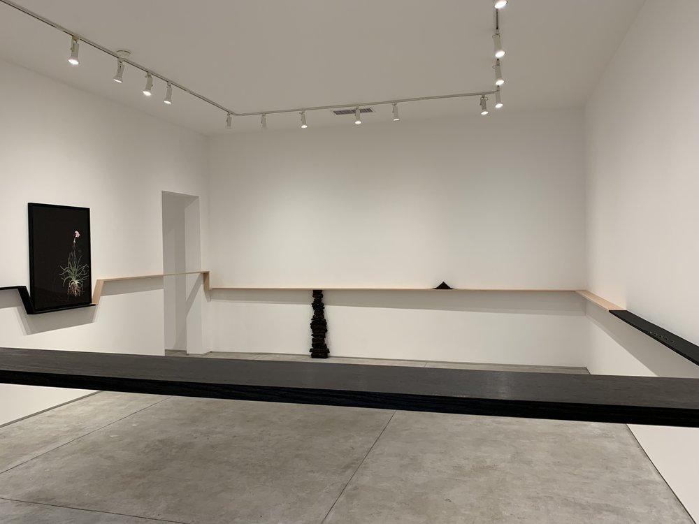Katrina Moorhead,   seapinksea  , installation view, 2019