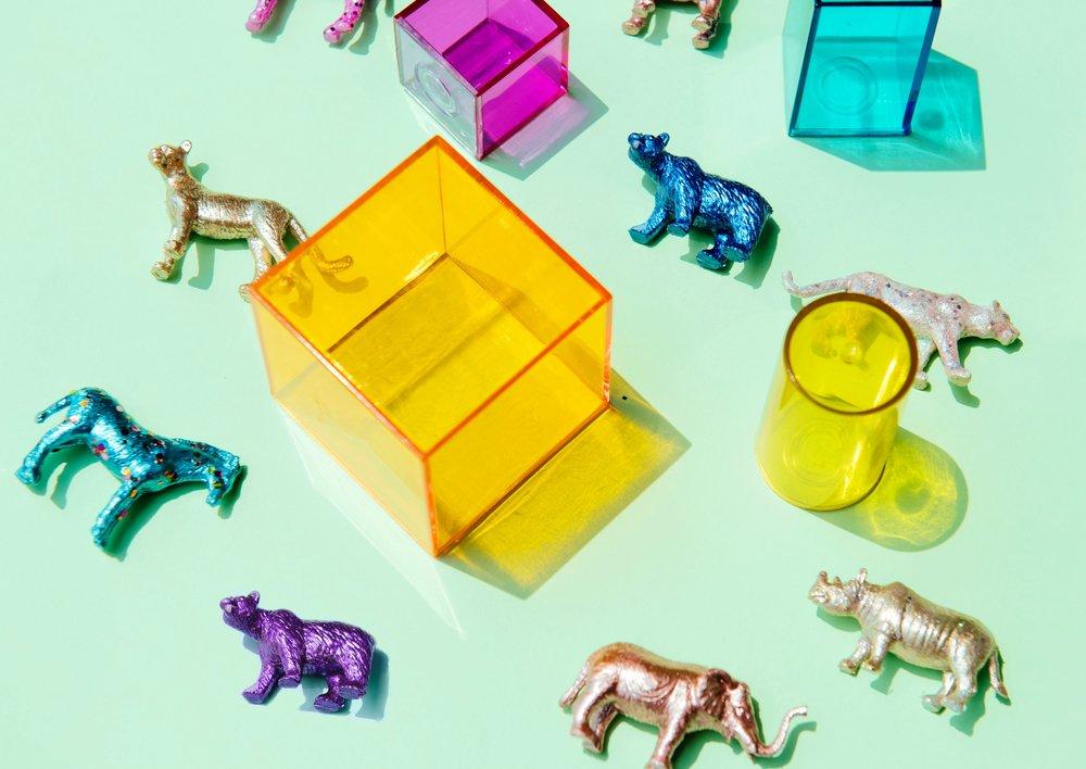 animals-boxes-close-up-997728.jpg