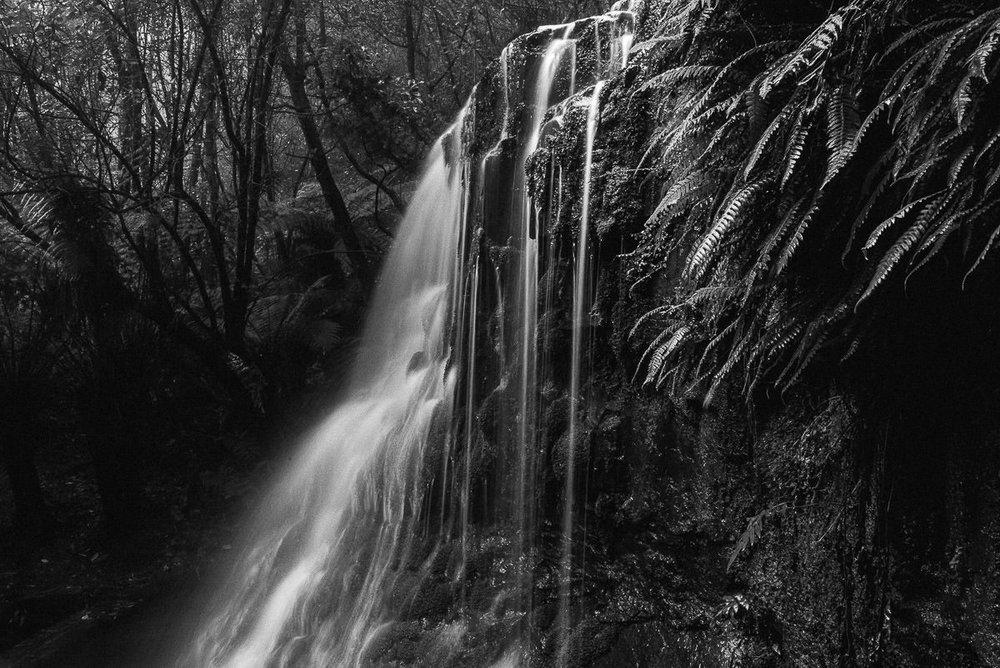 Silver Falls Fern Tree Tasmania