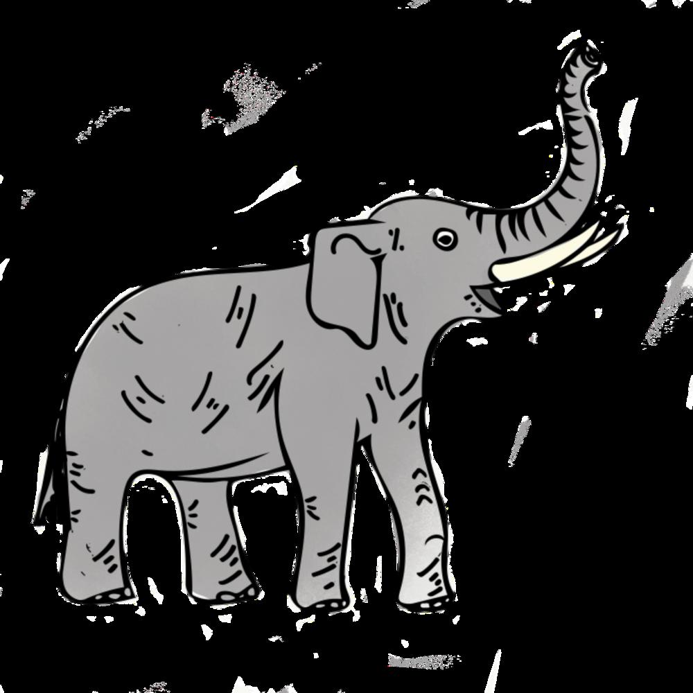 jordan_kushins_elephant.png