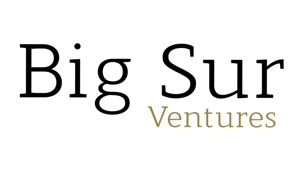 Logo BSV 16z9 v2.png