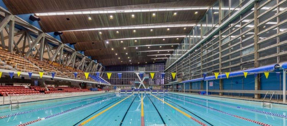 Diving swimming (2).jpg