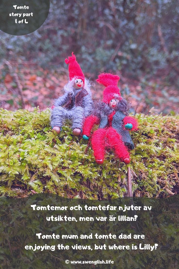 swedish-tomte-story-part 1.jpg
