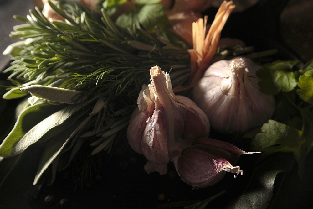 tracey-sherwood-seasonal-photography-main.jpg