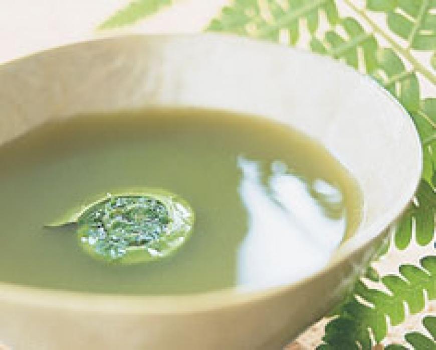 Fiddlehead Soup.jpg
