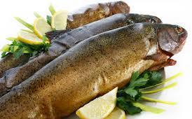 Smoked trout, avocado and pear salad.jpg