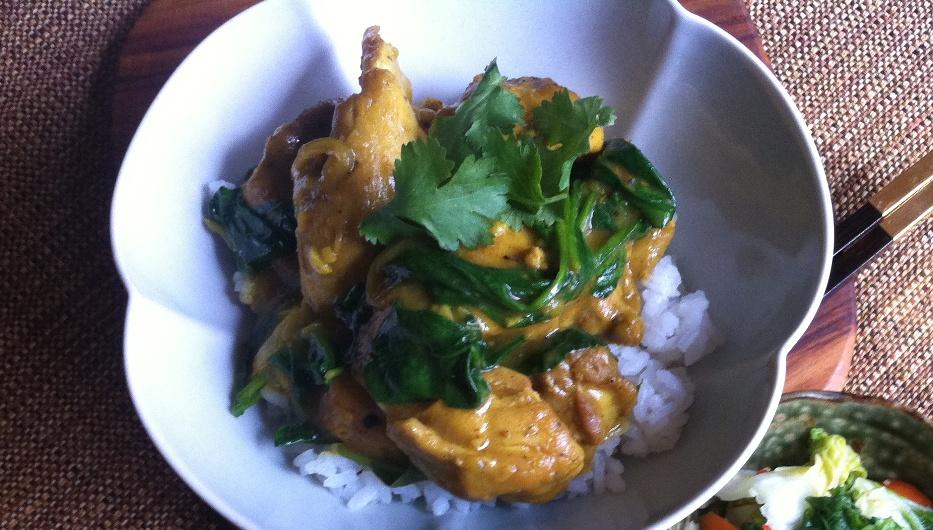 Japanese chicken curry.jpg