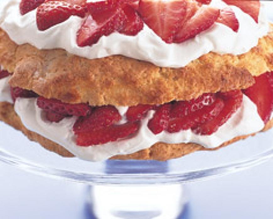 New Wave Shortcake.jpg