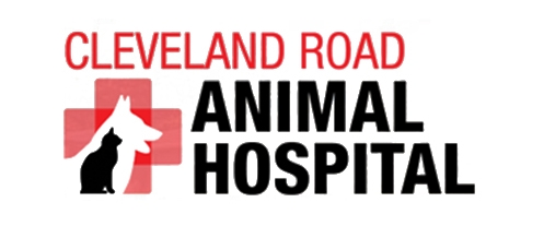 Cleveland Rd Animal Hospital.jpg