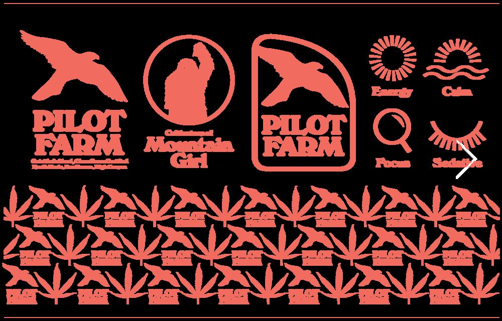 pilot_farm_17.png