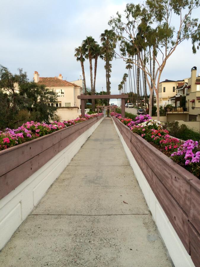 TBT goldenrod footbridge