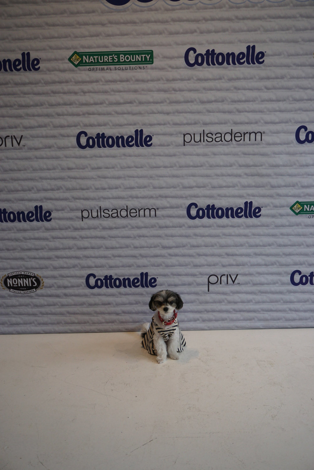 step and repeat at #nyfw beauty bar presented by cottonelle